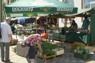 Farmářské trhy před radnicí každou středu