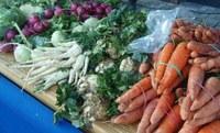 Farmářské trhy před radnicí každý čtvrtek