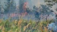 Kvůli suchu hrozí požáry. Krajský úřad nařídil dodržovat opatření, jak jim zabránit