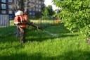 Na zahradách mateřských školek v obvodu byl proveden postřik proti klíšťatům
