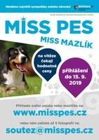 MISS PES a MAZLÍK 2019
