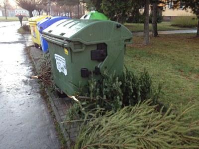 Svoz vánočních stromků