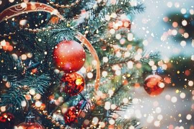 Vánoční strom se rozsvítí v pátek 6. prosince
